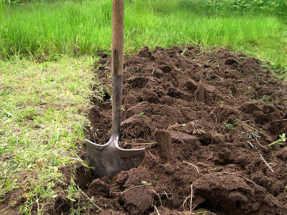Осенняя подготовка почвы к сезону