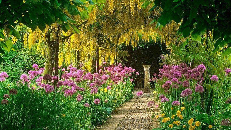 Весенний цветущий сад на своем приусадебном участке