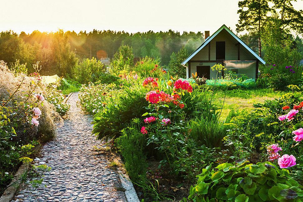 Ландшафтный дизайн в саду.