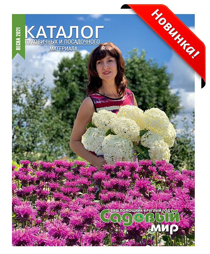 Садовый Мир Интернет Магазин Г Жуковский Розы