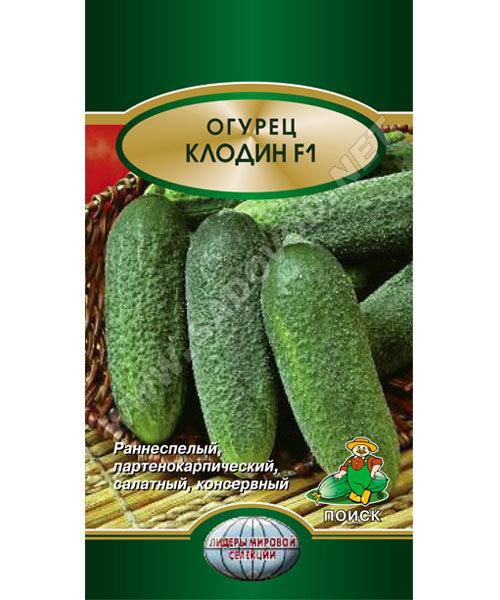 Огурец Клодин F1 (Поиск) семена купить по низким ценам с доставкой в интернет магазине Садовый Мир