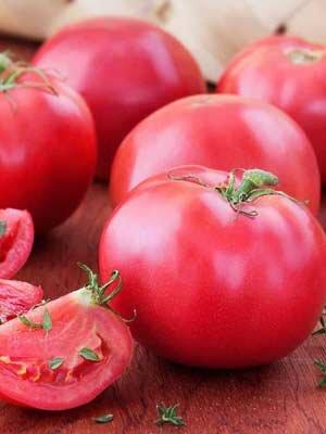 Томат Ранний розовый (Гавриш) семена купить по низким ценам с доставкой в интернет магазине Садовый Мир